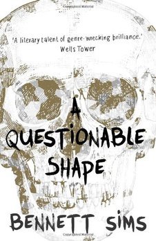 a questionable shape horror fiction review confessions of a reviewer!!