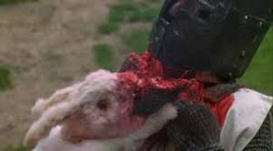 The Killer Rabbit of Caerbannog Picture