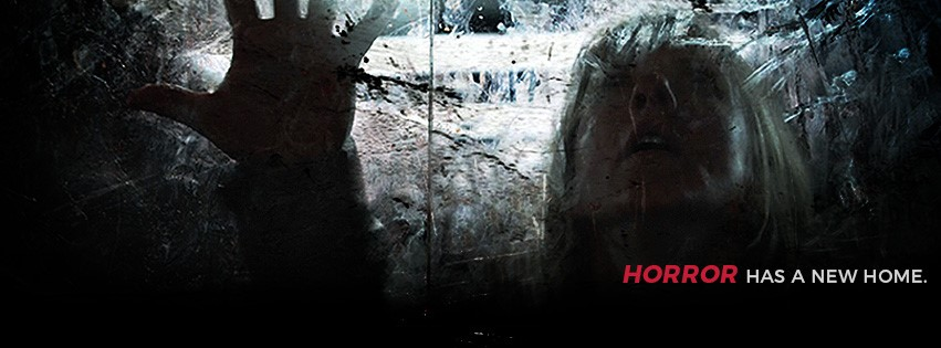 HORROR REVIEW WEBSITE Picture