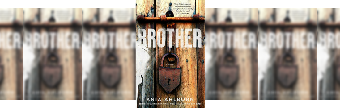 BROTHER BY ANIA AHLBORN FICTION REVIEW WEBSITE UK  Picture