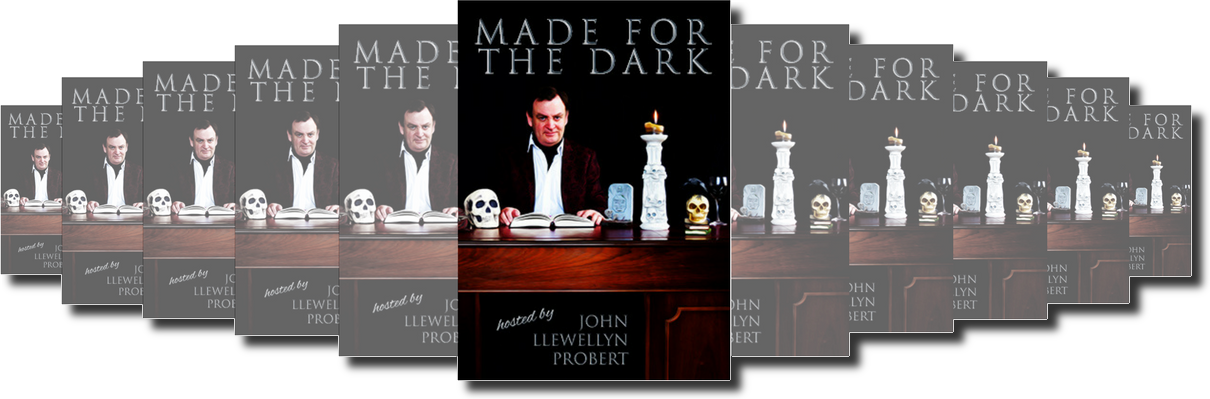 made for the dark by john llewellyn probert