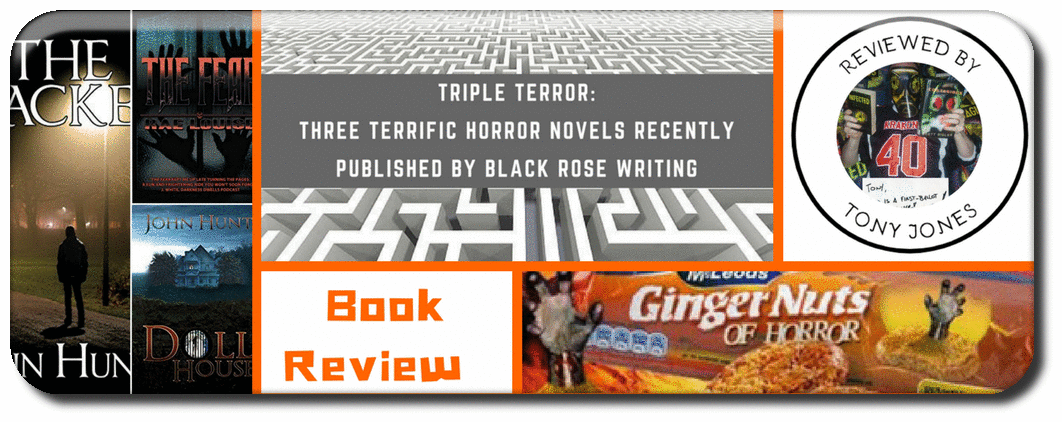 TRIPLE TERROR:THREE TERRIFIC HORROR NOVELS RECENTLY PUBLISHED BY BLACK ROSE WRITING Picture